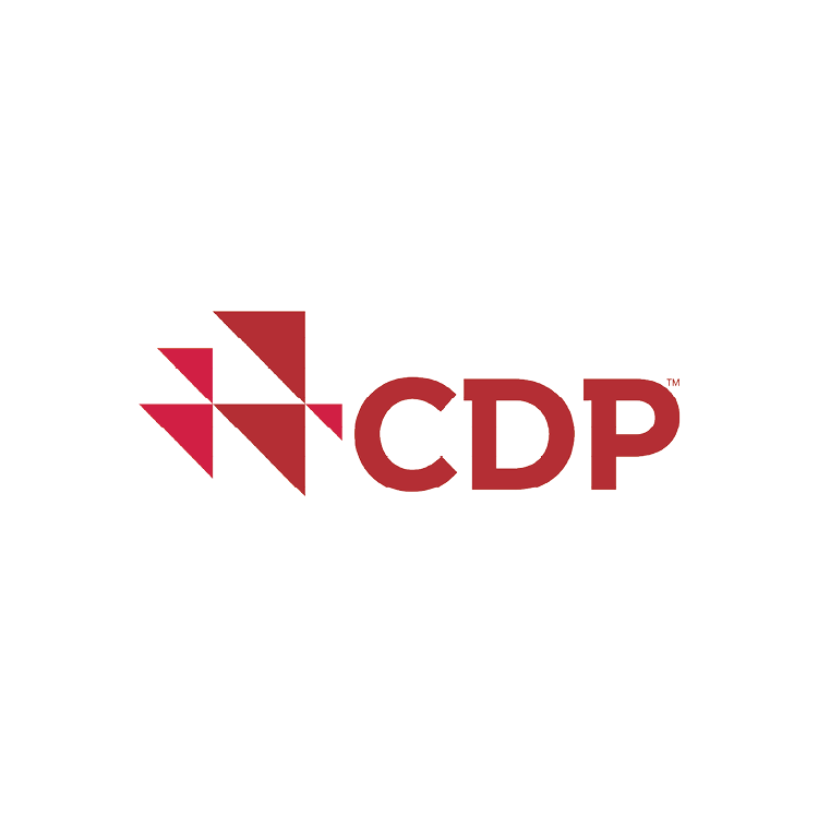 CDP (formerly Carbon Disclosure Project)
